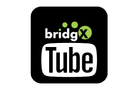 bridgX YouTube Channel
